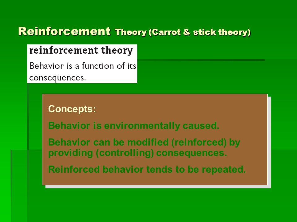Reinforcement Theory (Carrot & stick theory)
