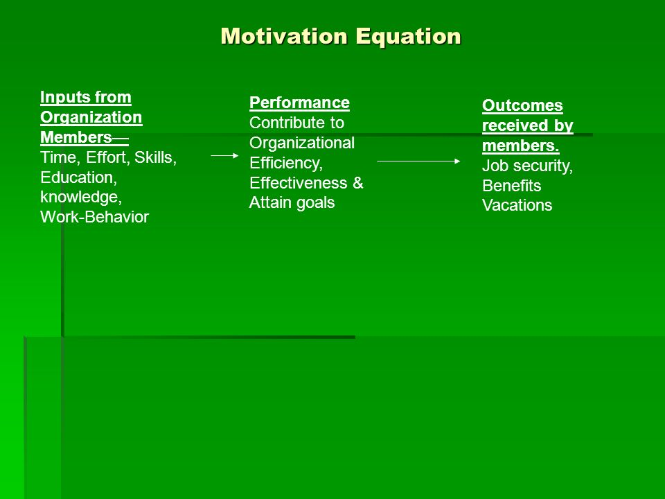Motivation Equation Inputs from Organization Members— Performance