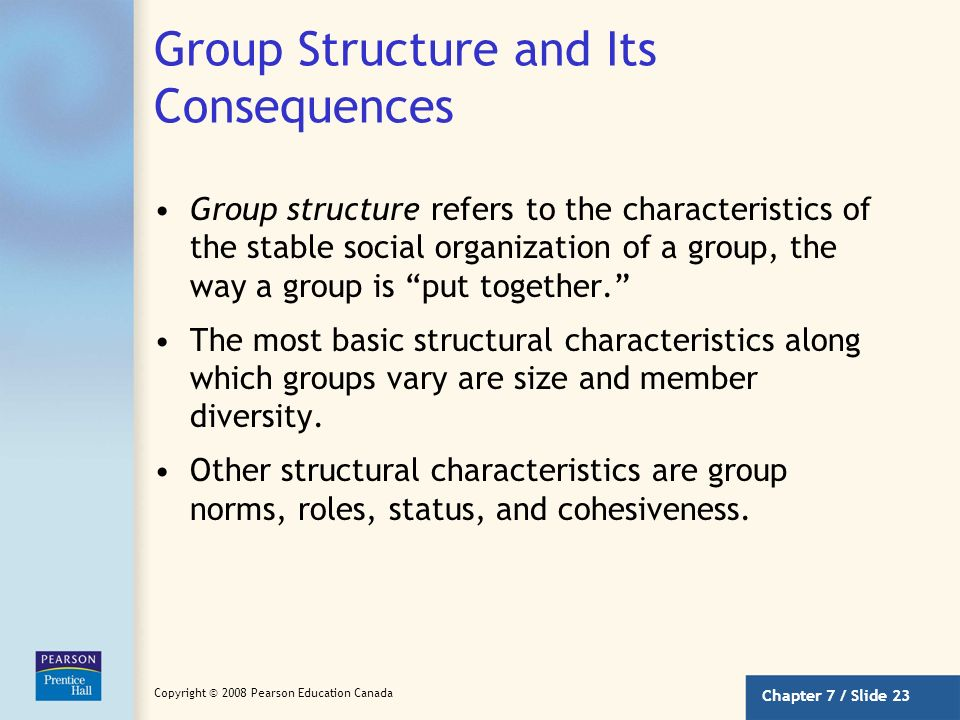 Group Structure and Its Consequences