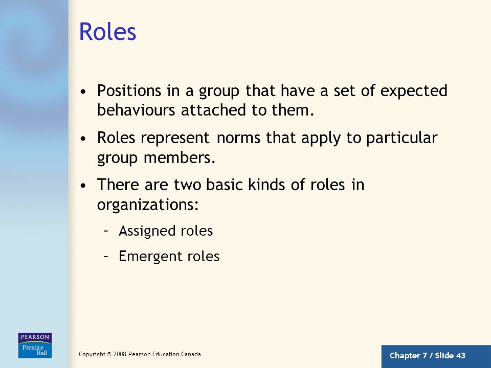 Roles Positions in a group that have a set of expected behaviours attached to them. Roles represent norms that apply to particular group members.