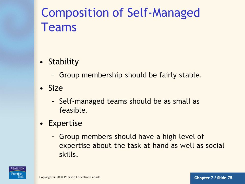 Composition of Self-Managed Teams