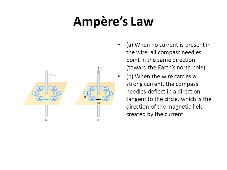 Ampère's Law (a) When no current is present in the wire, all compass needles point in the same direction (toward the Earth's north pole).