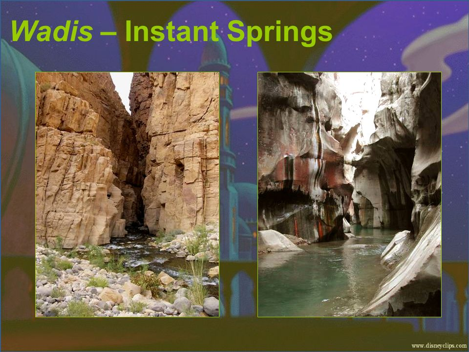 Wadis – Instant Springs