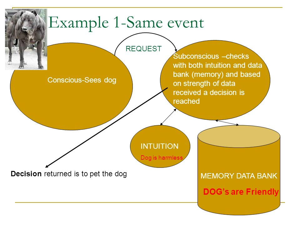 Example 1-Same event DOG's are Friendly REQUEST