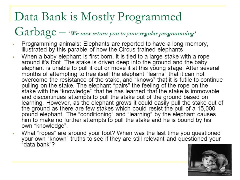 Data Bank is Mostly Programmed Garbage – 'We now return you to your regular programming'