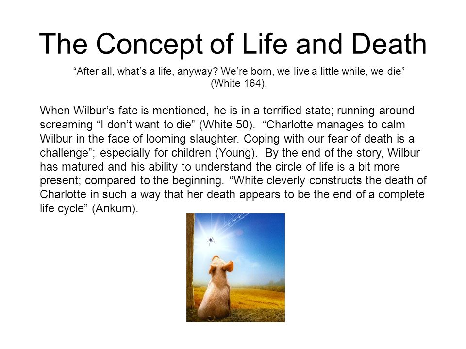 The Concept of Life and Death