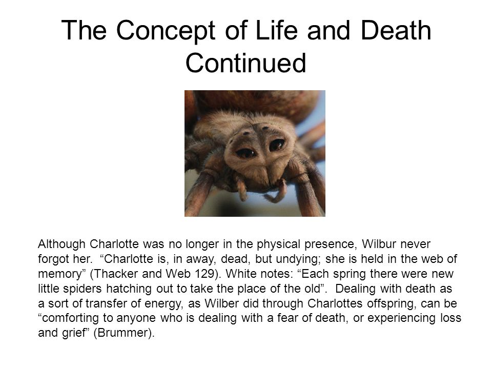 The Concept of Life and Death Continued