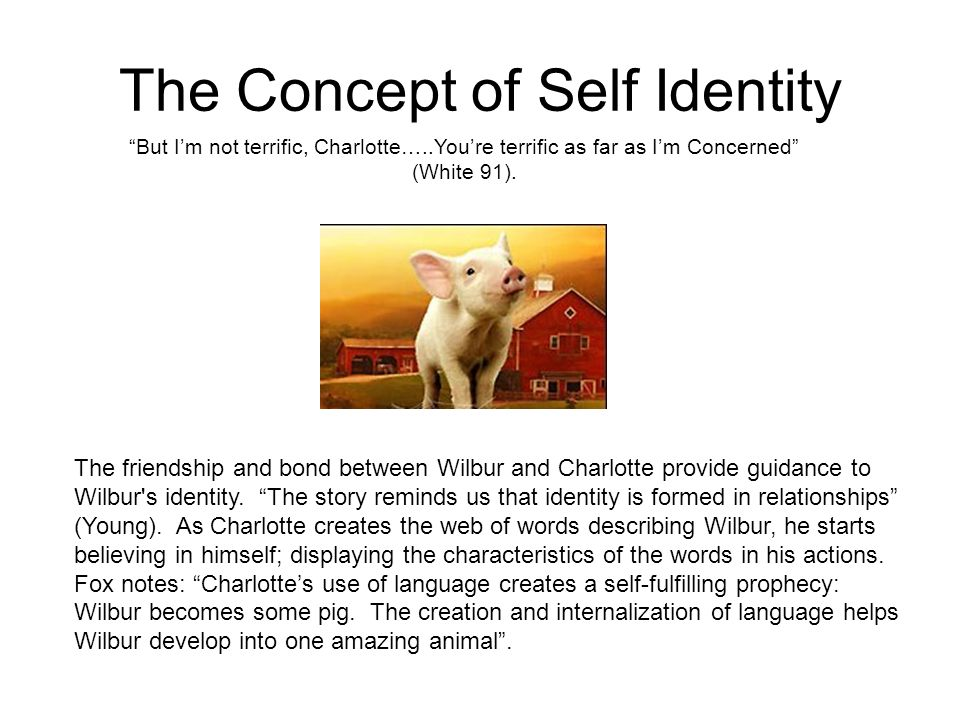 The Concept of Self Identity
