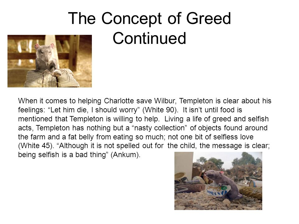 The Concept of Greed Continued