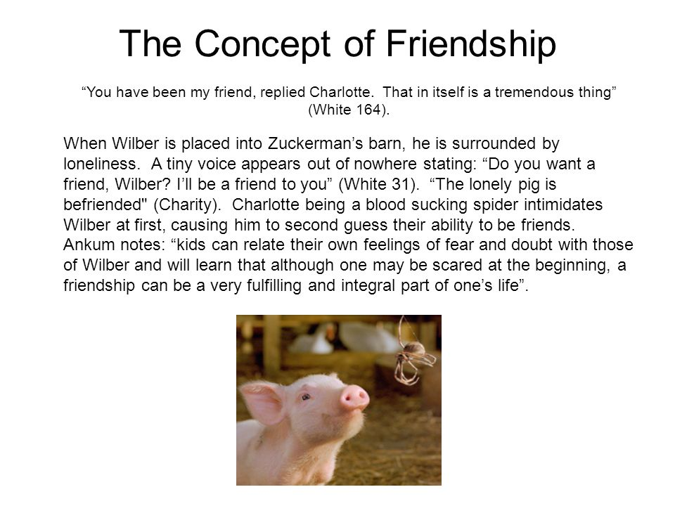 The Concept of Friendship