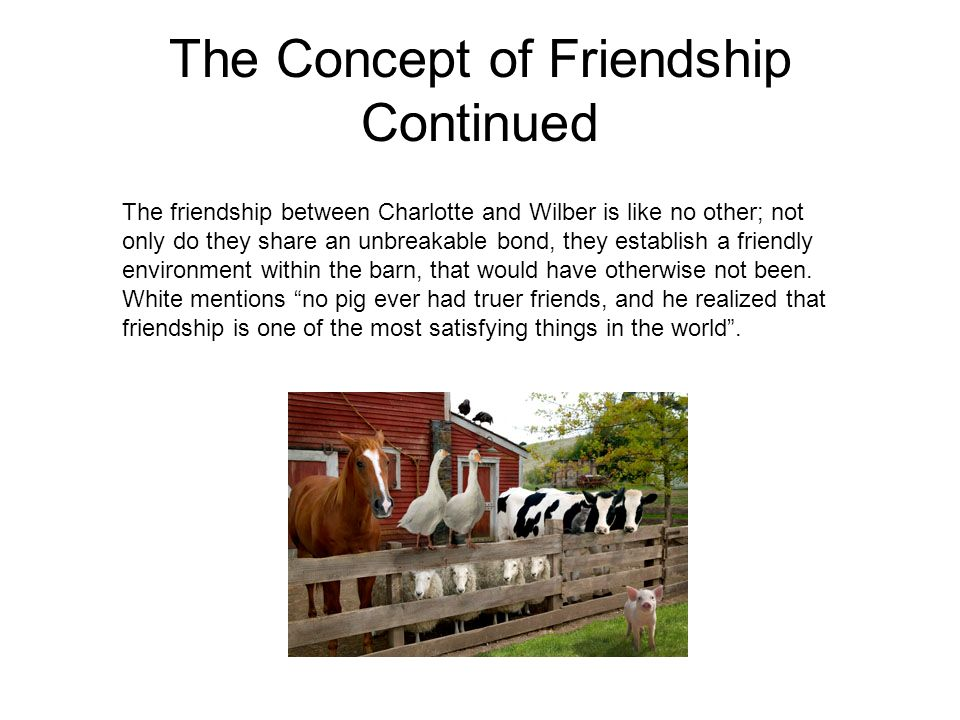 The Concept of Friendship Continued