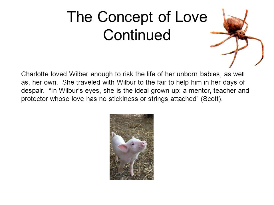 The Concept of Love Continued