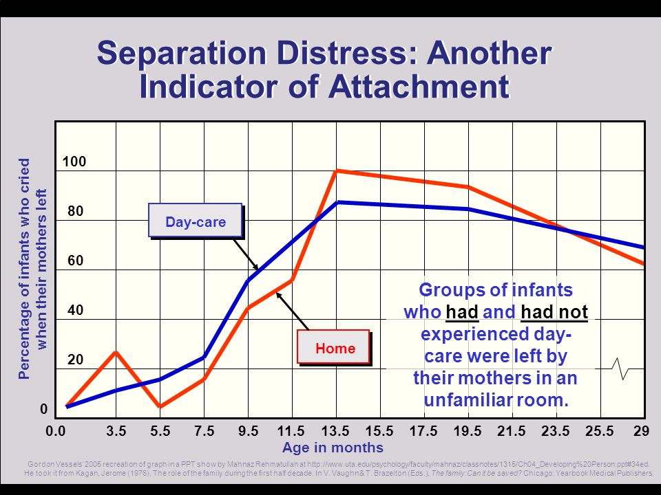 Separation Distress: Another Indicator of Attachment
