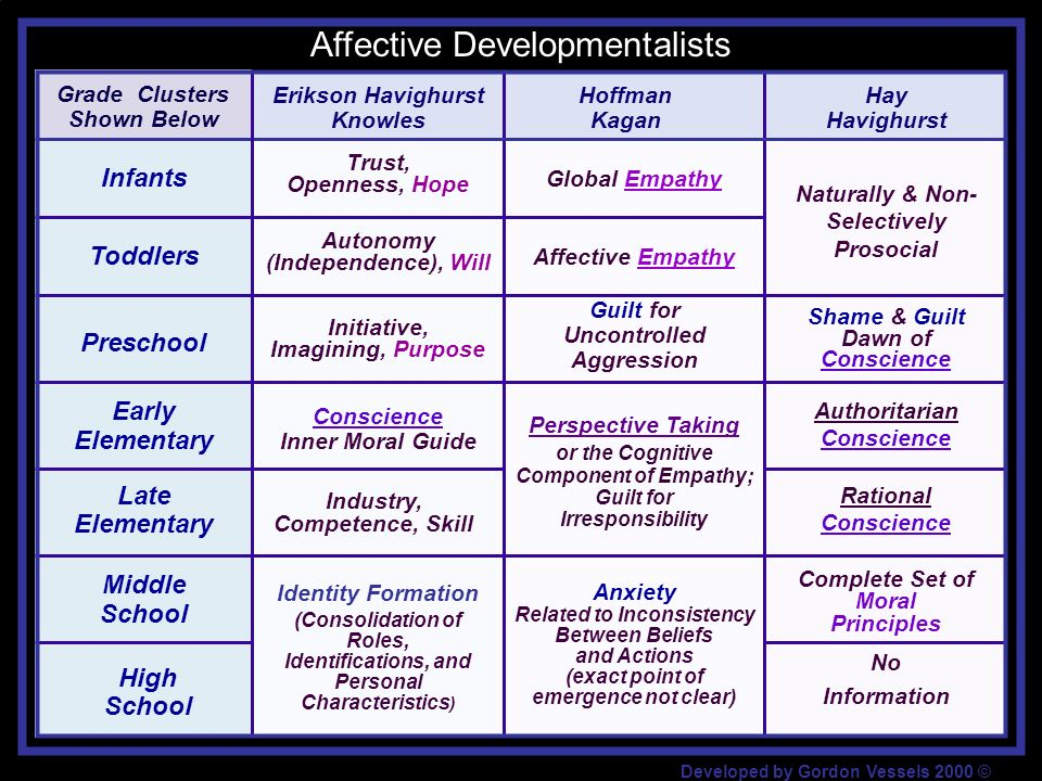 Affective Developmentalists