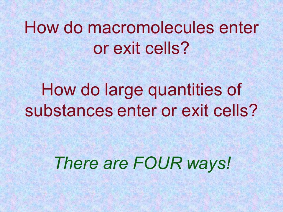 How do macromolecules enter or exit cells
