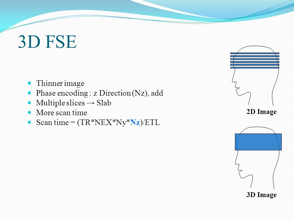 3D FSE Thinner image Phase encoding : z Direction (Nz), add