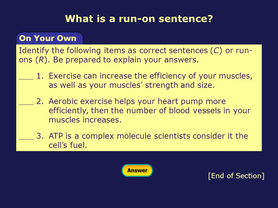 What is a run-on sentence