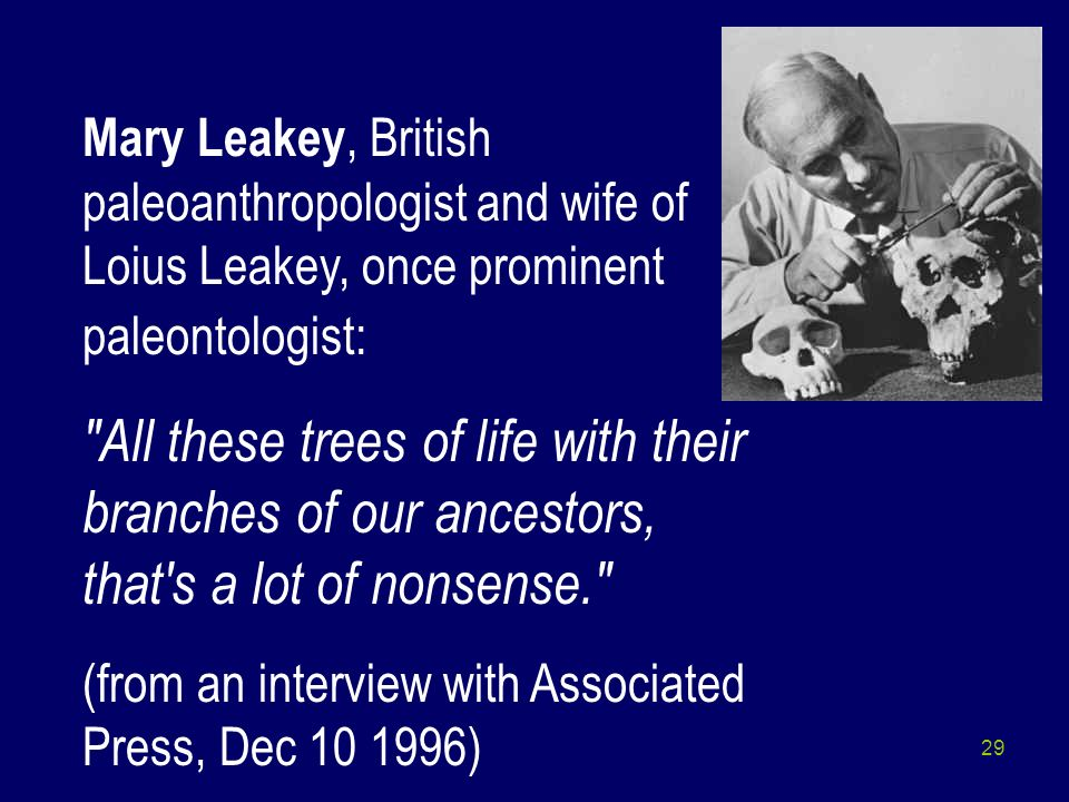 Mary Leakey, British paleoanthropologist and wife of Loius Leakey, once prominent paleontologist: