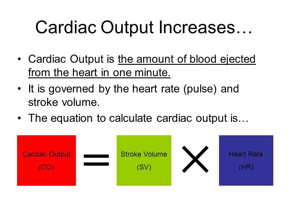 Cardiac Output Increases…