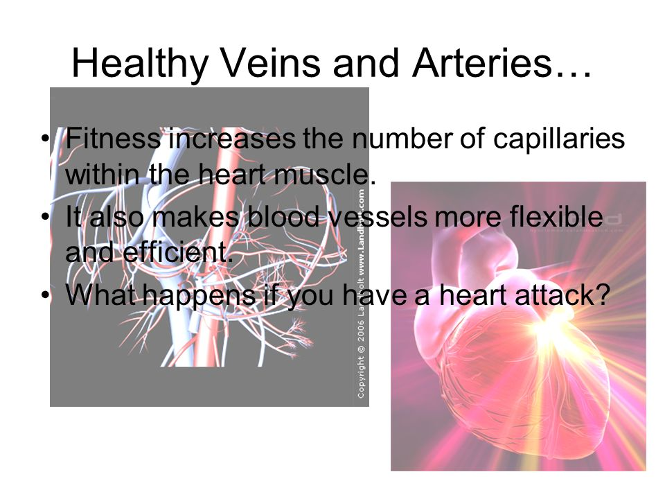 Healthy Veins and Arteries…