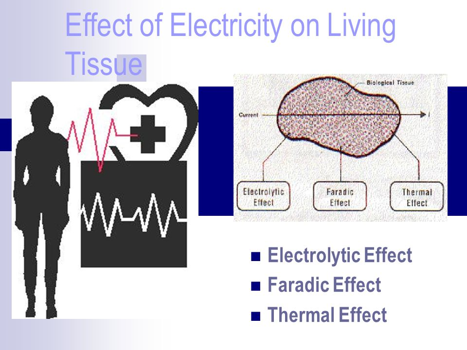 Effect of Electricity on Living Tissue