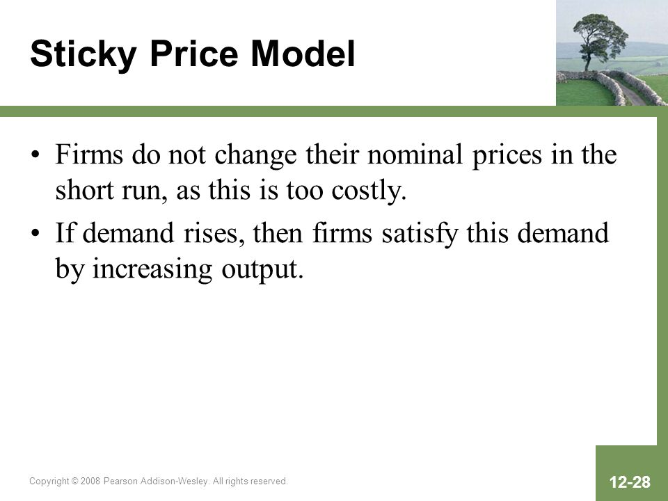 Sticky Price Model Firms do not change their nominal prices in the short run, as this is too costly.