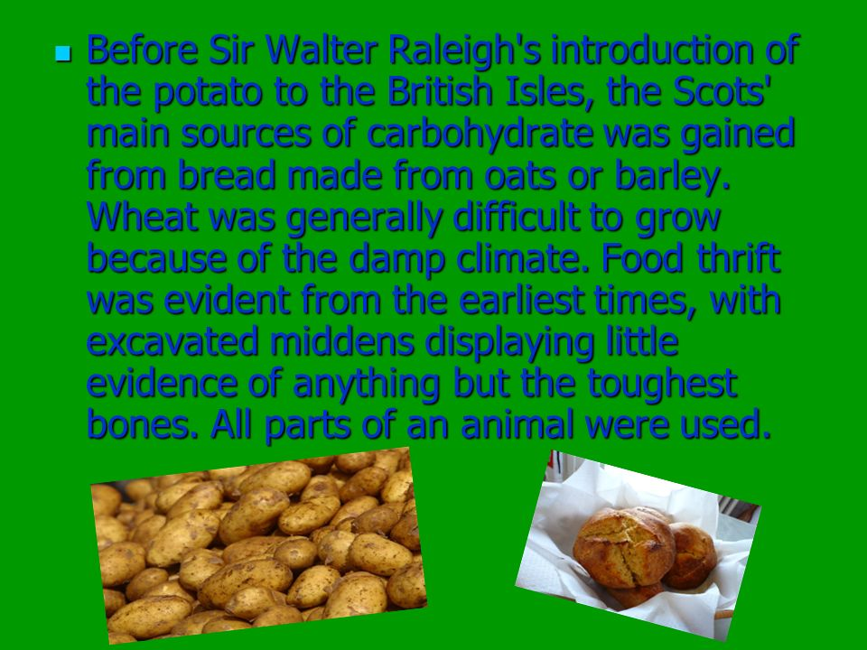 Before Sir Walter Raleigh s introduction of the potato to the British Isles, the Scots main sources of carbohydrate was gained from bread made from oats or barley.