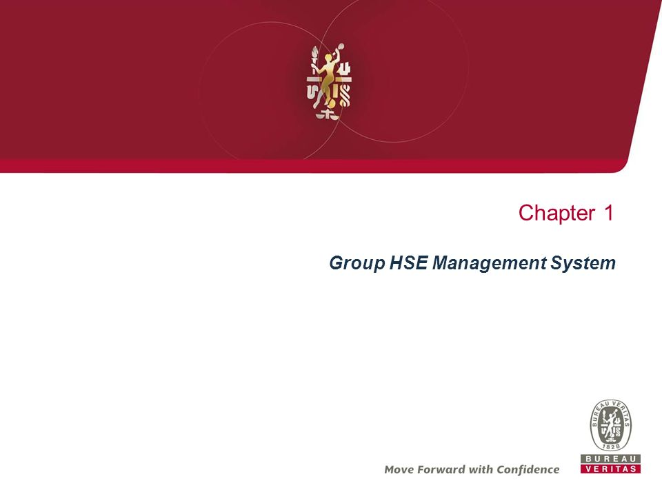 Chapter 1 Group HSE Management System