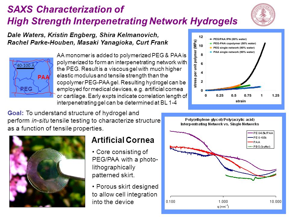 SAXS Characterization of High Strength Interpenetrating Network Hydrogels