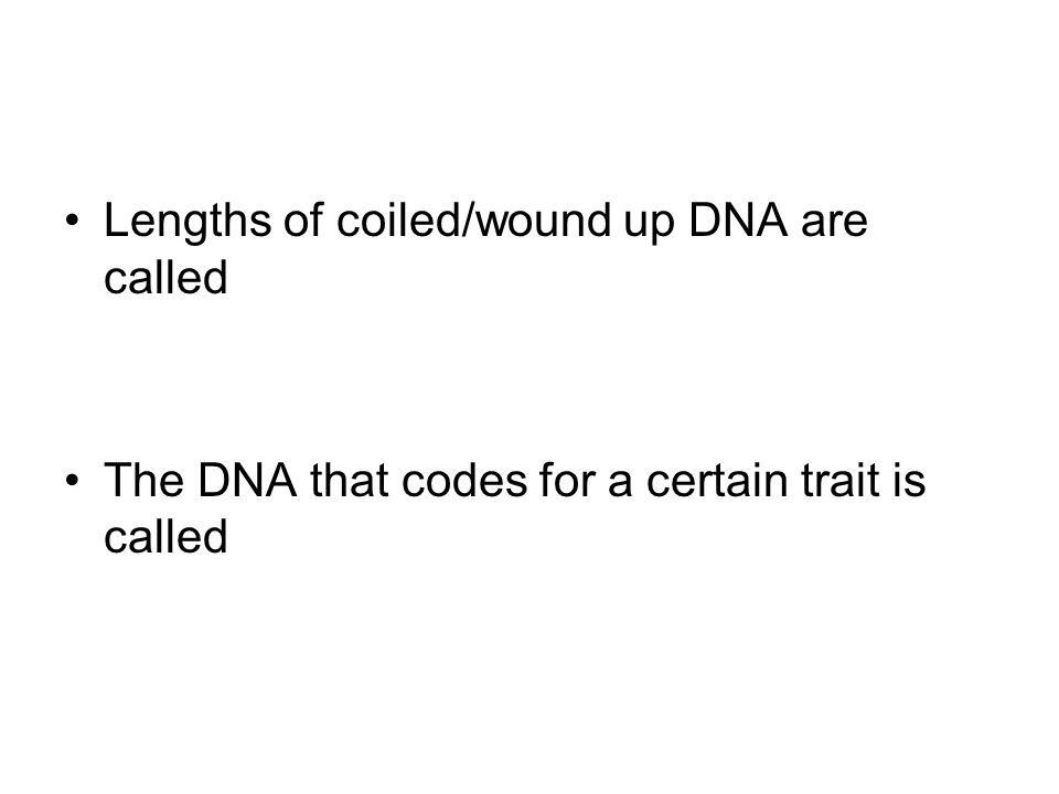 Lengths of coiled/wound up DNA are called