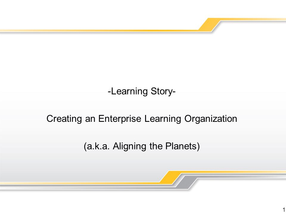 Creating an Enterprise Learning Organization