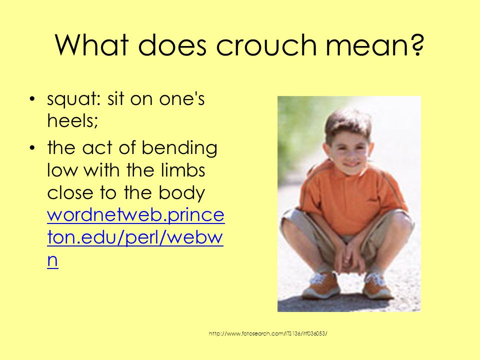 What does crouch mean squat: sit on one s heels;