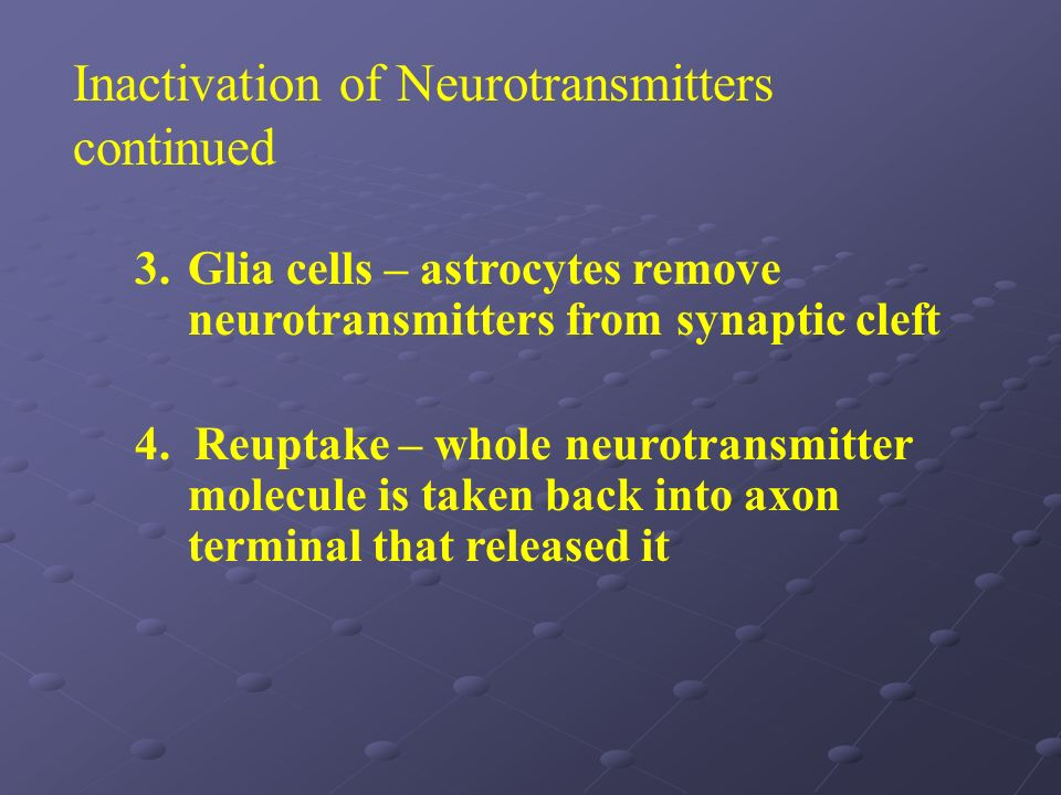 Inactivation of Neurotransmitters continued