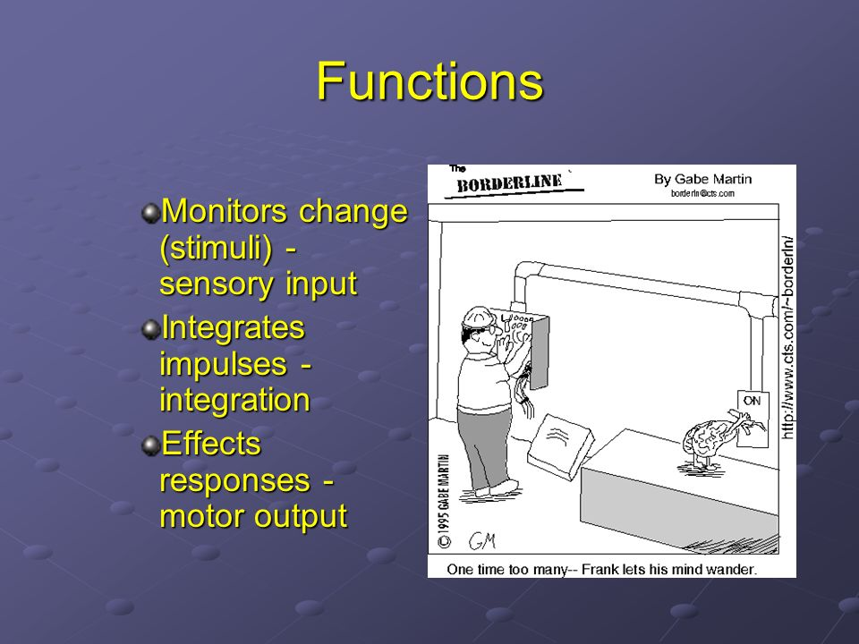 Functions Monitors change (stimuli) - sensory input