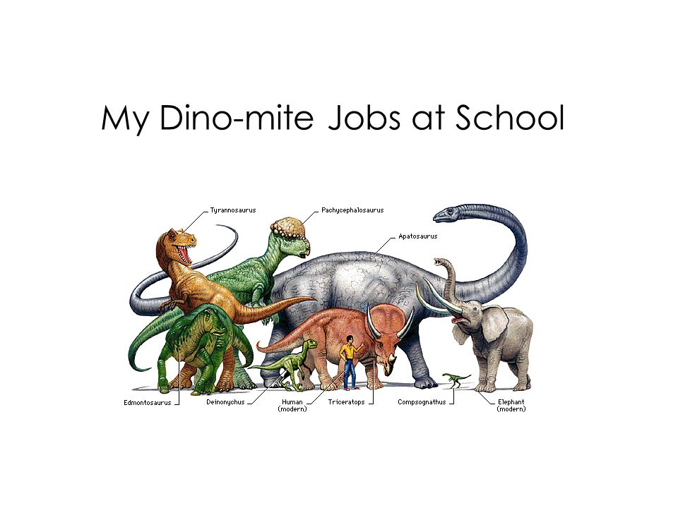 My Dino-mite Jobs at School