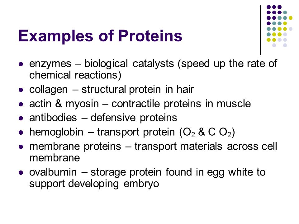 Examples of Proteins enzymes – biological catalysts (speed up the rate of chemical reactions) collagen – structural protein in hair.