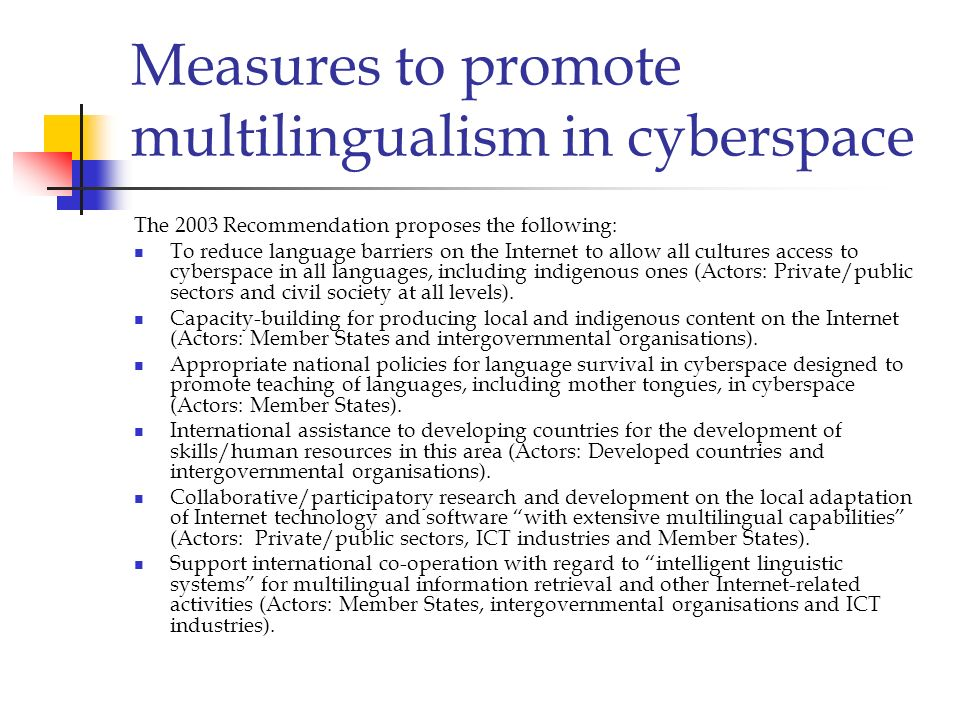Measures to promote multilingualism in cyberspace