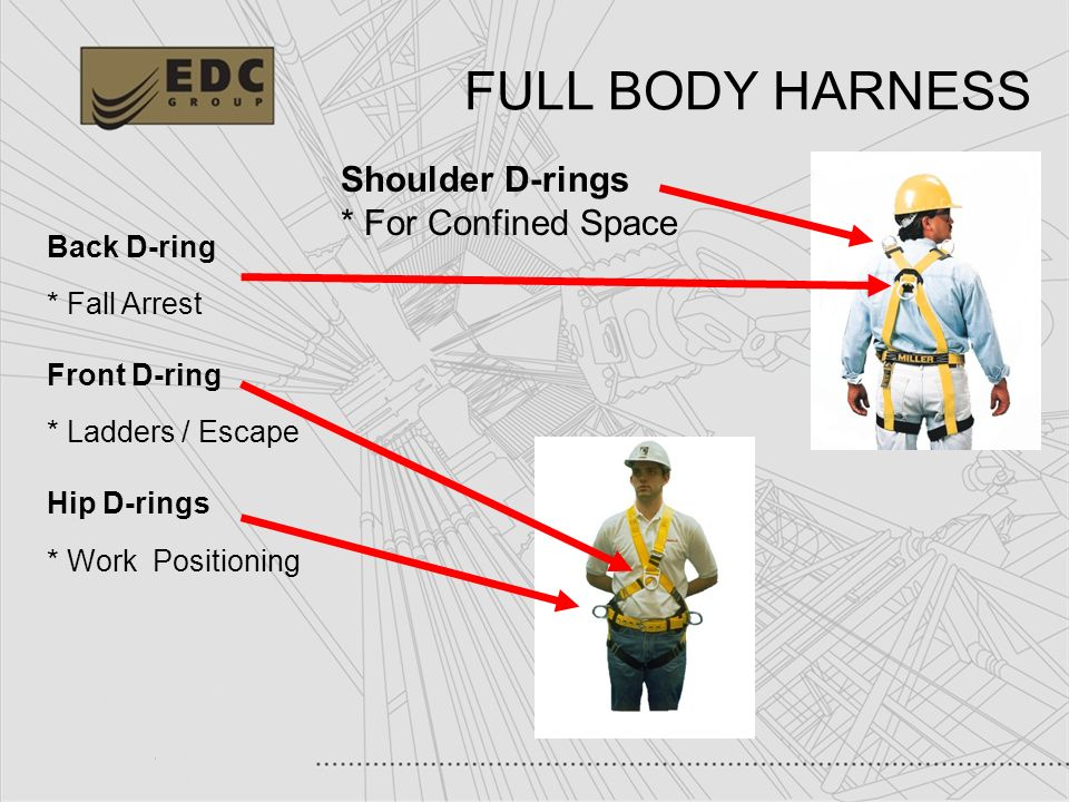 FULL+BODY+HARNESS+Shoulder+D rings+%2A+For+Confined+Space+Back+D ring working at heights fall protection ppt video online download