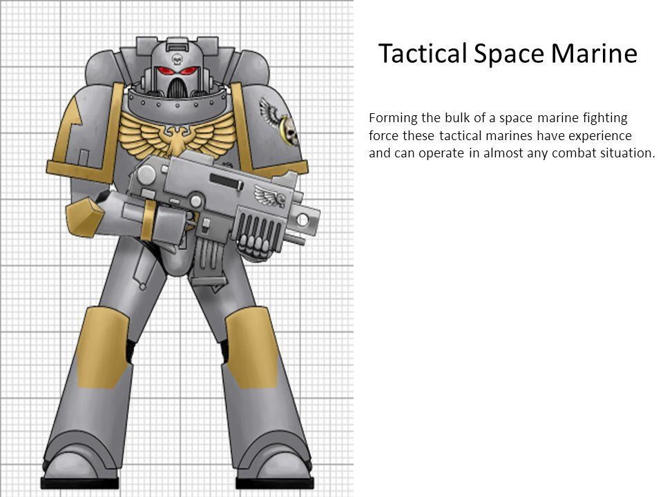 Tactical Space Marine