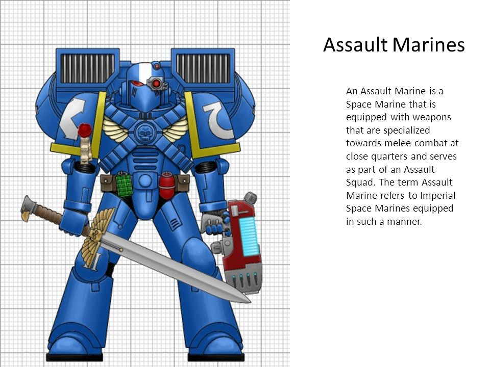 Assault Marines