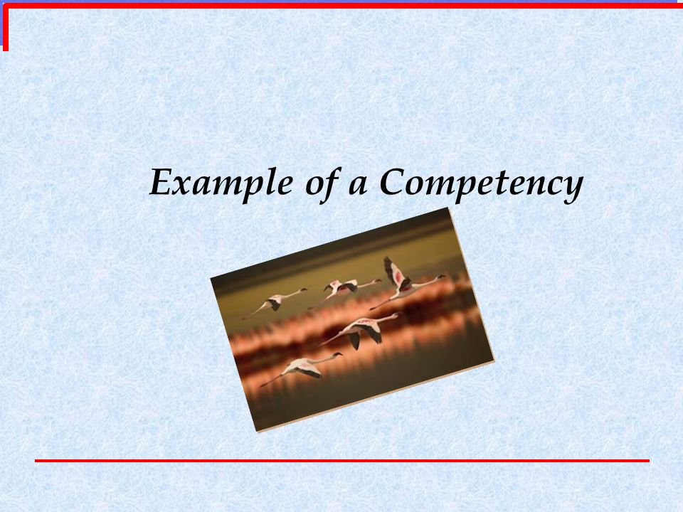 Example of a Competency