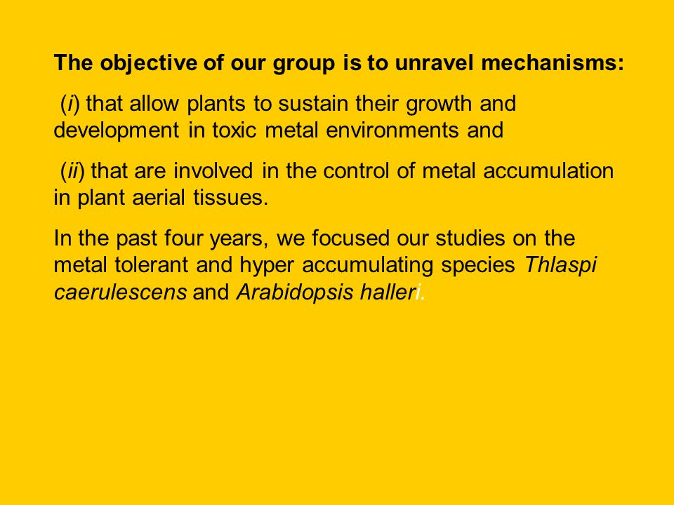 The objective of our group is to unravel mechanisms: