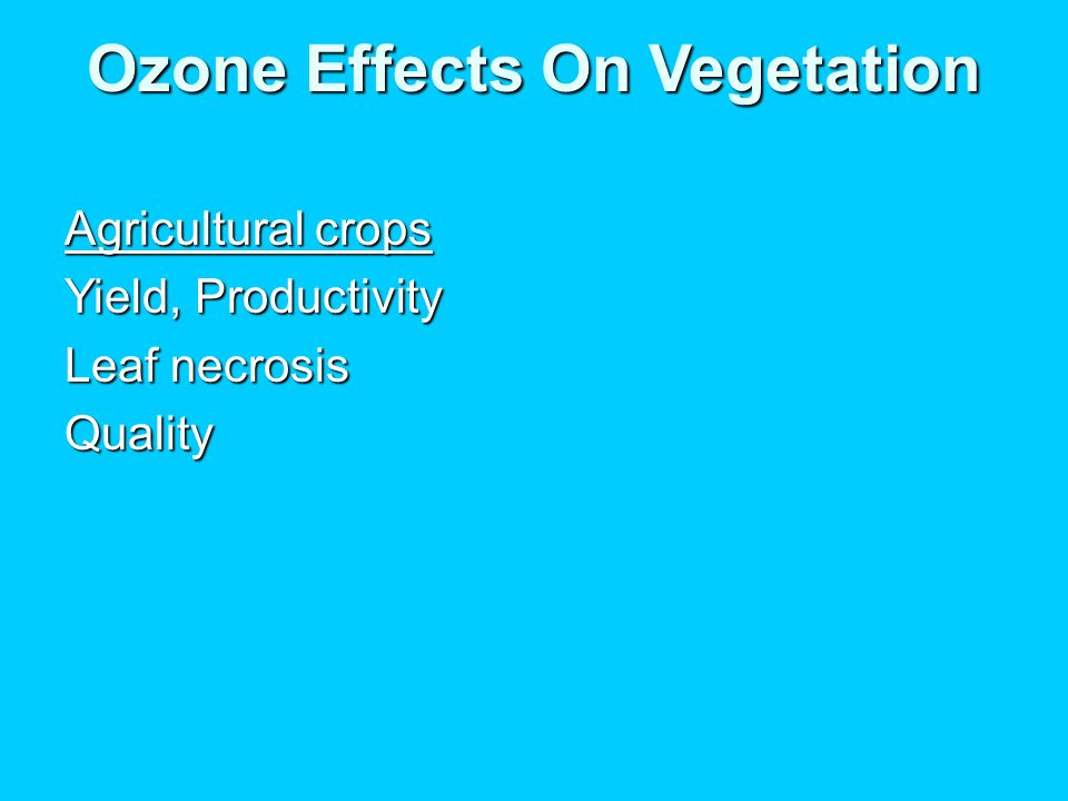 Ozone Effects On Vegetation