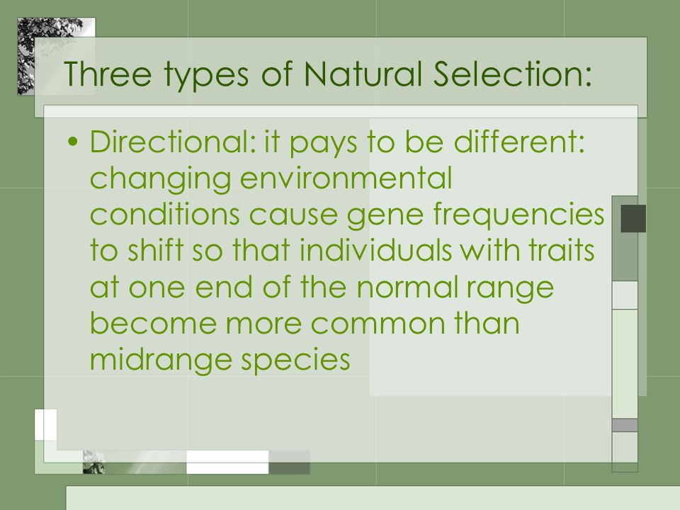 Three types of Natural Selection: