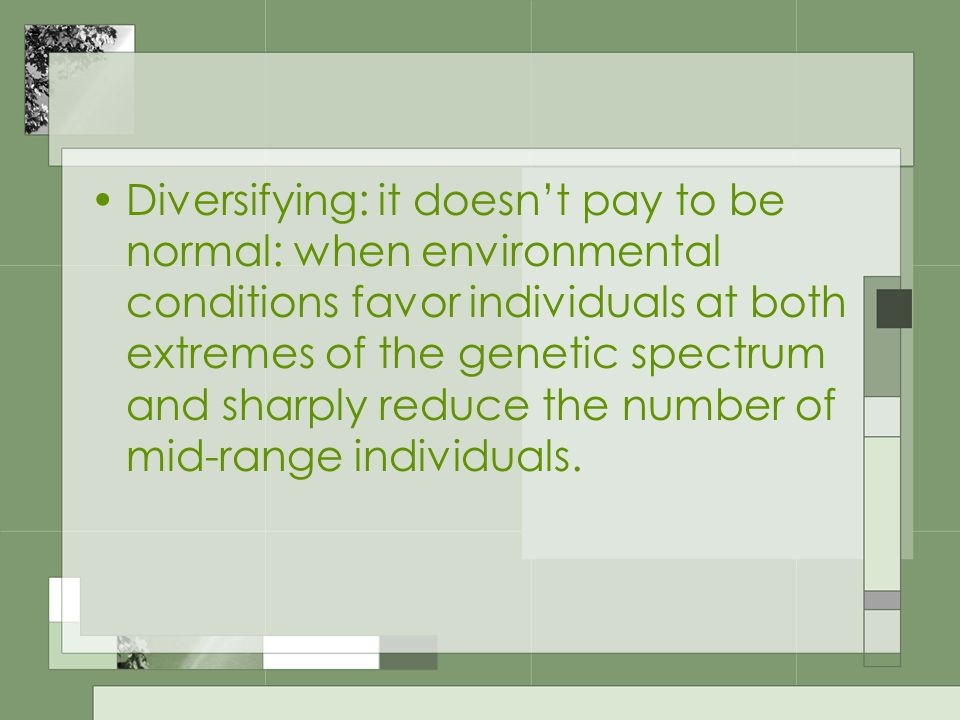 Diversifying: it doesn't pay to be normal: when environmental conditions favor individuals at both extremes of the genetic spectrum and sharply reduce the number of mid-range individuals.