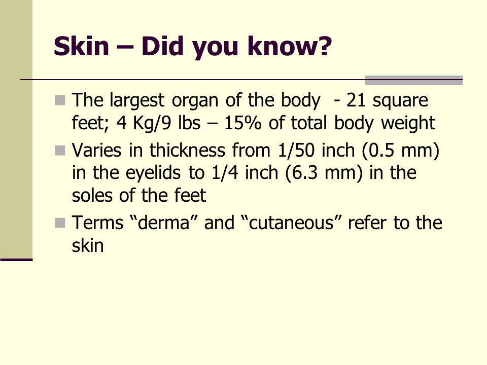 Skin – Did you know The largest organ of the body - 21 square feet; 4 Kg/9 lbs – 15% of total body weight.