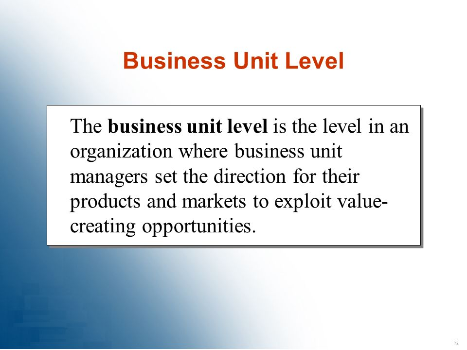 Business Unit Level