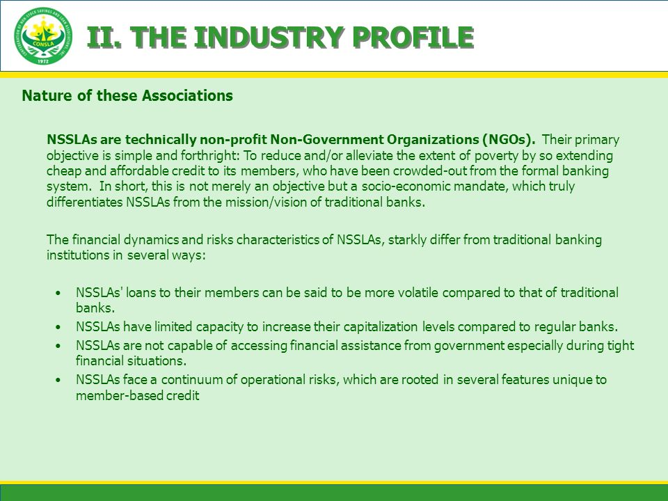 II. THE INDUSTRY PROFILE