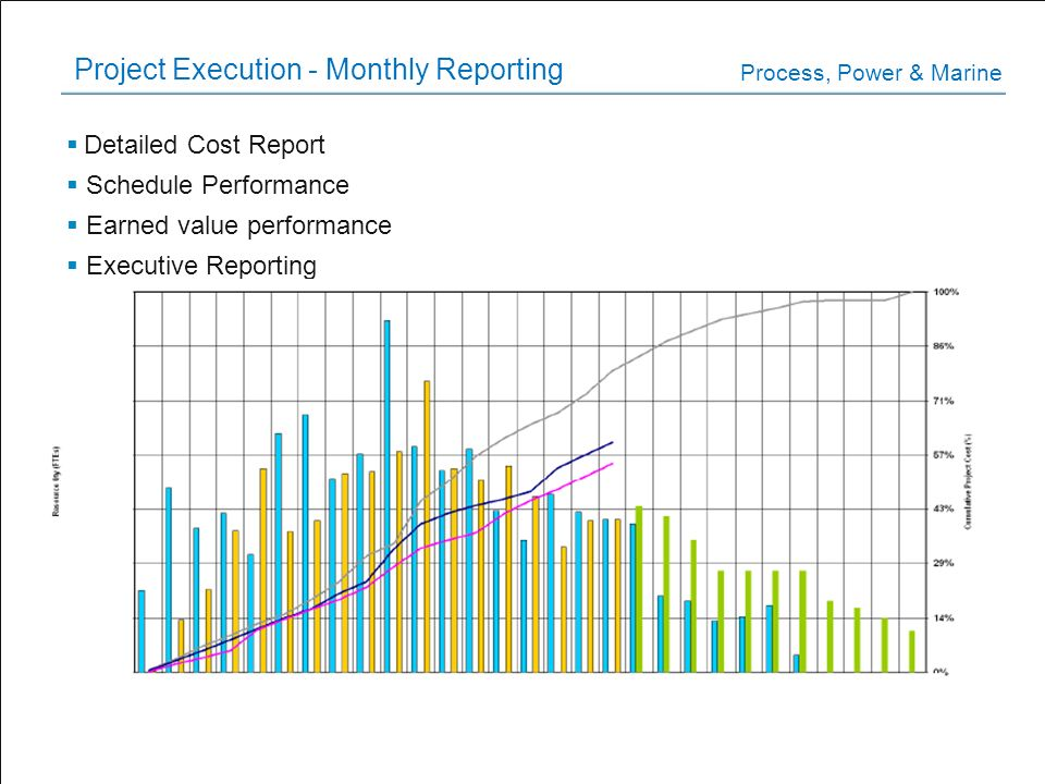 Project Execution - Monthly Reporting