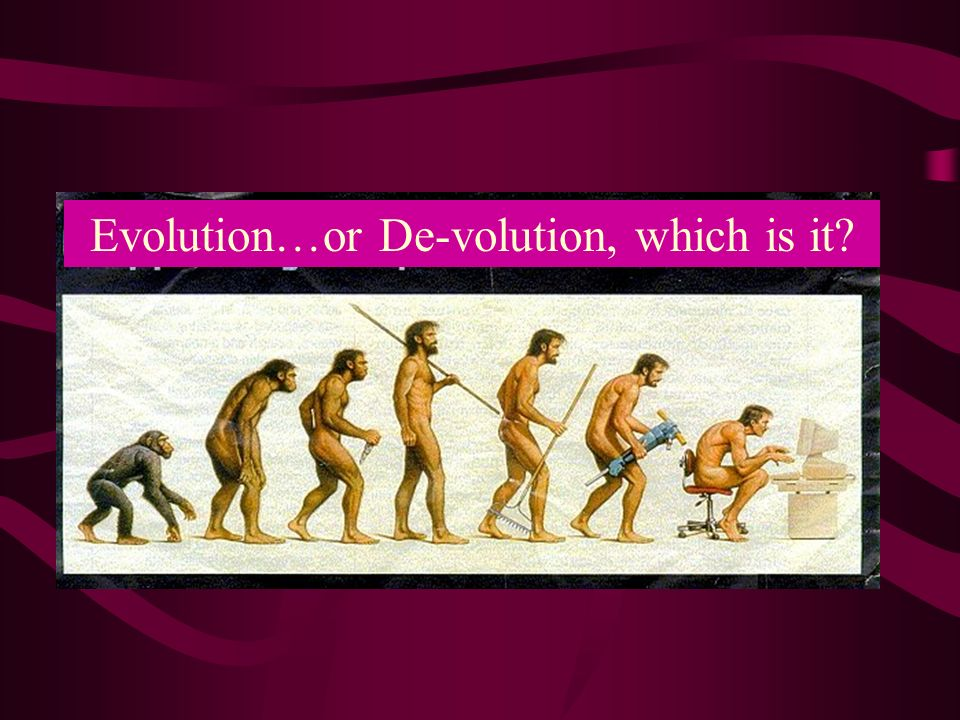 Evolution…or De-volution, which is it